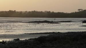 guinea-ca-foscari-mp4-00_00_19_24-still001